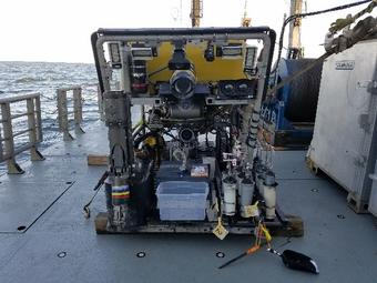 Connectivity of Coral Ecosystems ROV