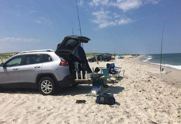 Tailgate fishing is a favorite passtime at Island Beach State Park, where vehicles are allowed onto the sand and surf fisherman back up almost to the shore break to catch stripers of bluefish.