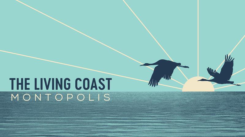 Coastal News Today | 'The Living Coast' Explores The Texas