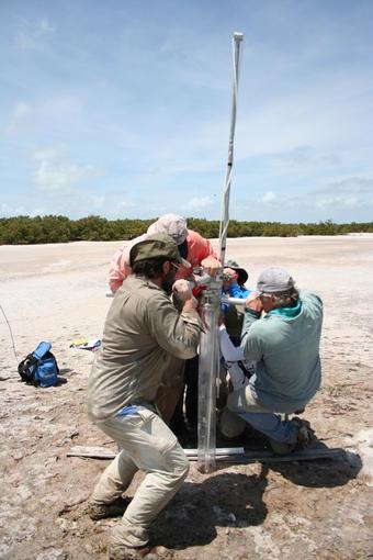 Scientists drill a piston core in Florida Bay sediment