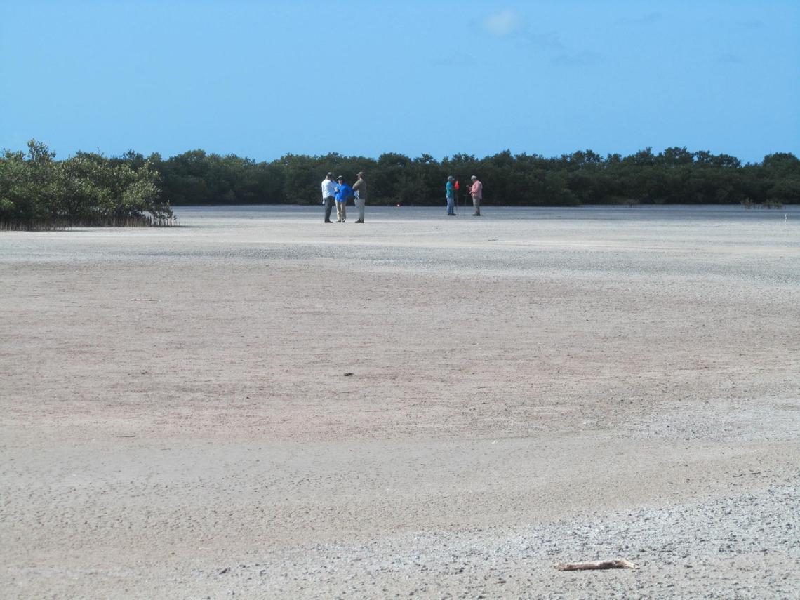 Field crews on a Florida Bay island