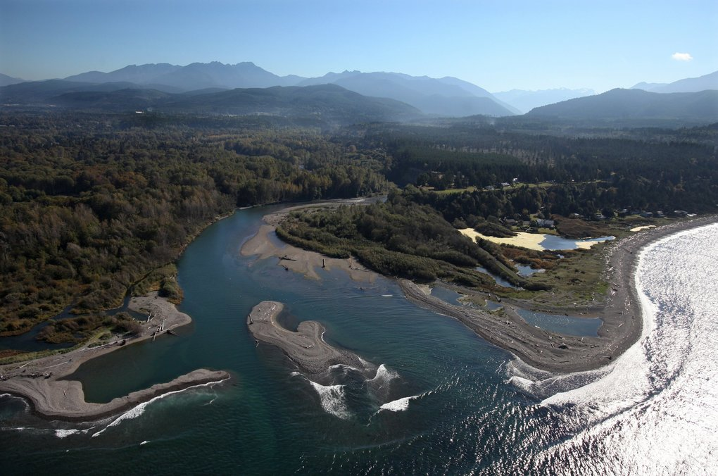 In 2010, the mouth of the Elwha was expected to change when the dams come out and more than 24 million cubic yards of sediment impounded behind the dams were unleashed.  (Anne Shaffer and CWI )