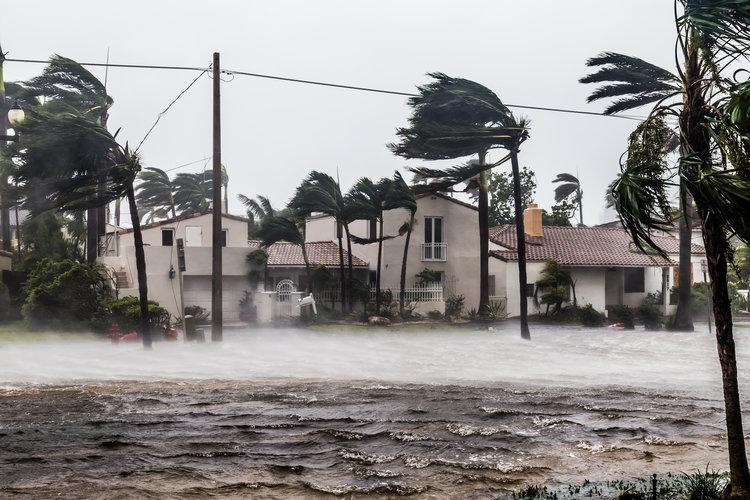 Hurricane Irene flood