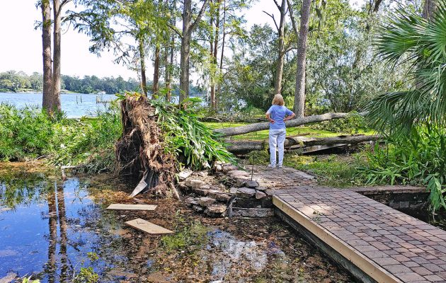 With new City resiliency committee, Carlucci aims to mitigate flooding