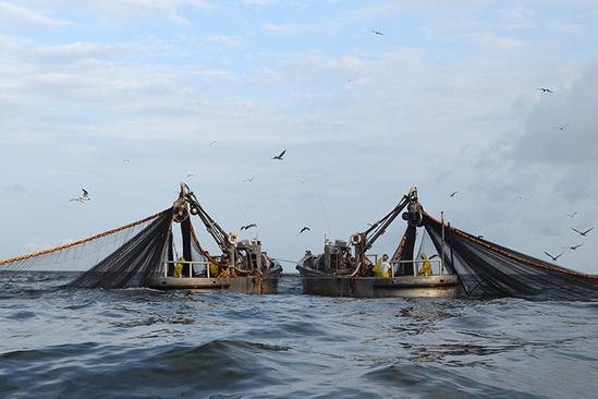 Two fishing boats off the Louisiana coast