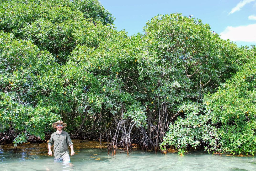 A person in waist-deep water with trees in the background.