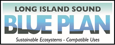 Blue Plan logo