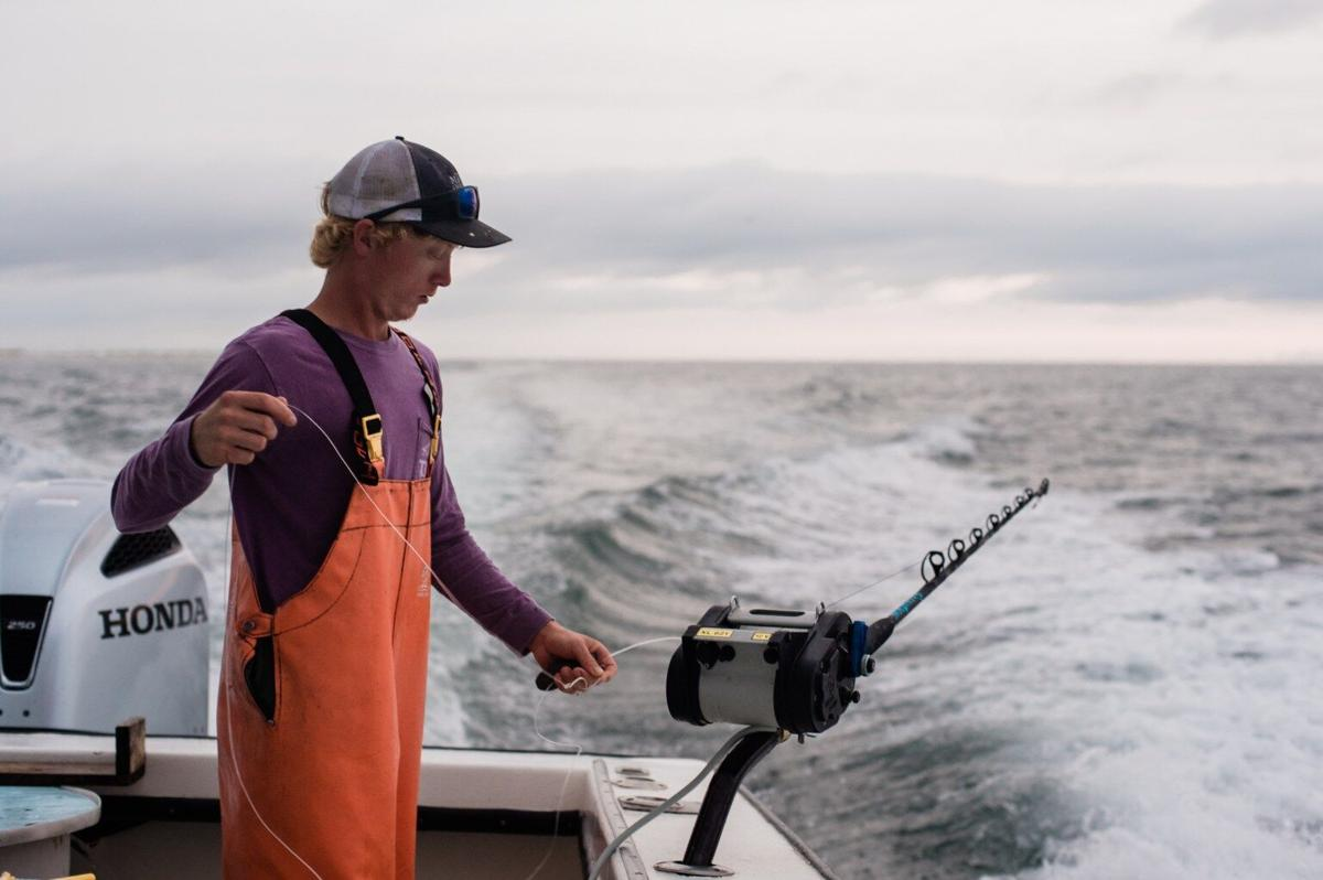 NC - Commercial fishing in NC adapts to threat of warming seas