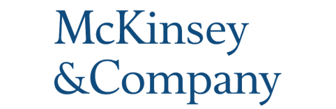 mckinsey for government icon