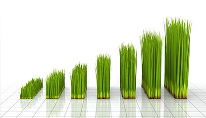 כך גיבשה ממשלת ישראל מדיניות חדשה לצמיחה ירוקה