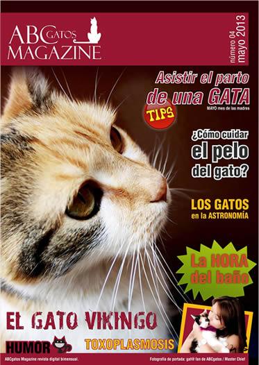 Portada ABCgatos Magazine No.4
