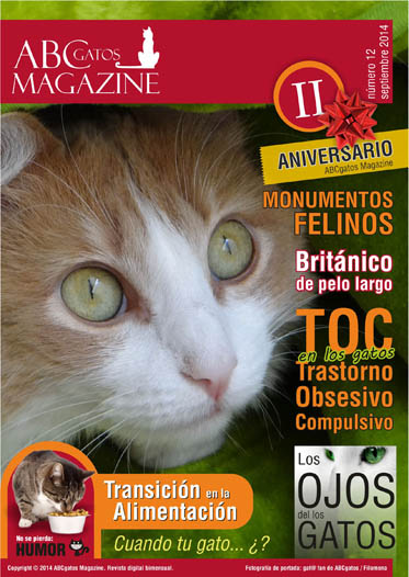 Portada ABCgatos Magazine No.12