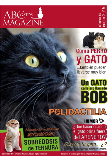 Portada ABCgatos Magazine No.14