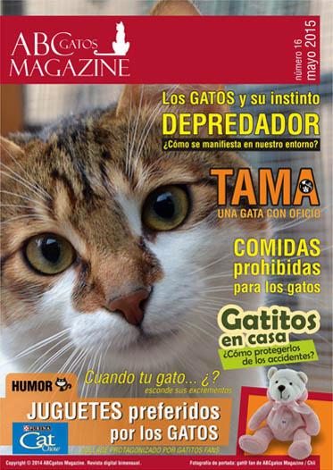 Portada ABCgatos Magazine No.16