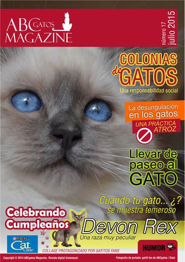 Portada ABCgatos Magazine No.17