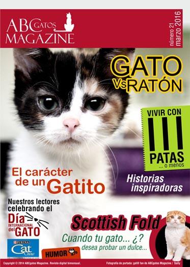 Portada ABCgatos Magazine No. 21