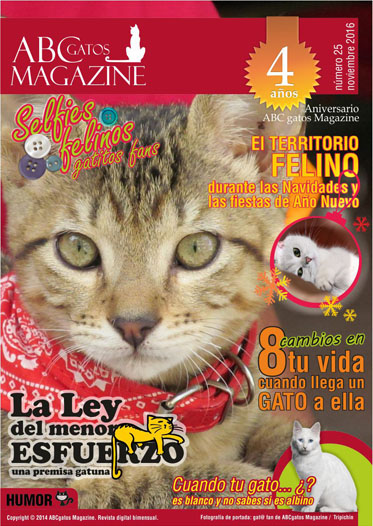 Portada ABCgatos Magazine No.25