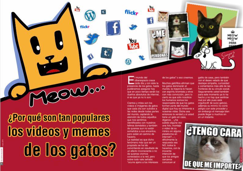 ¿Por qué tan populares los videos y memes de los gatos?
