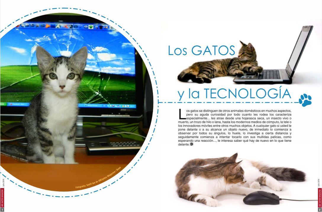 Los gatos y la tecnología.