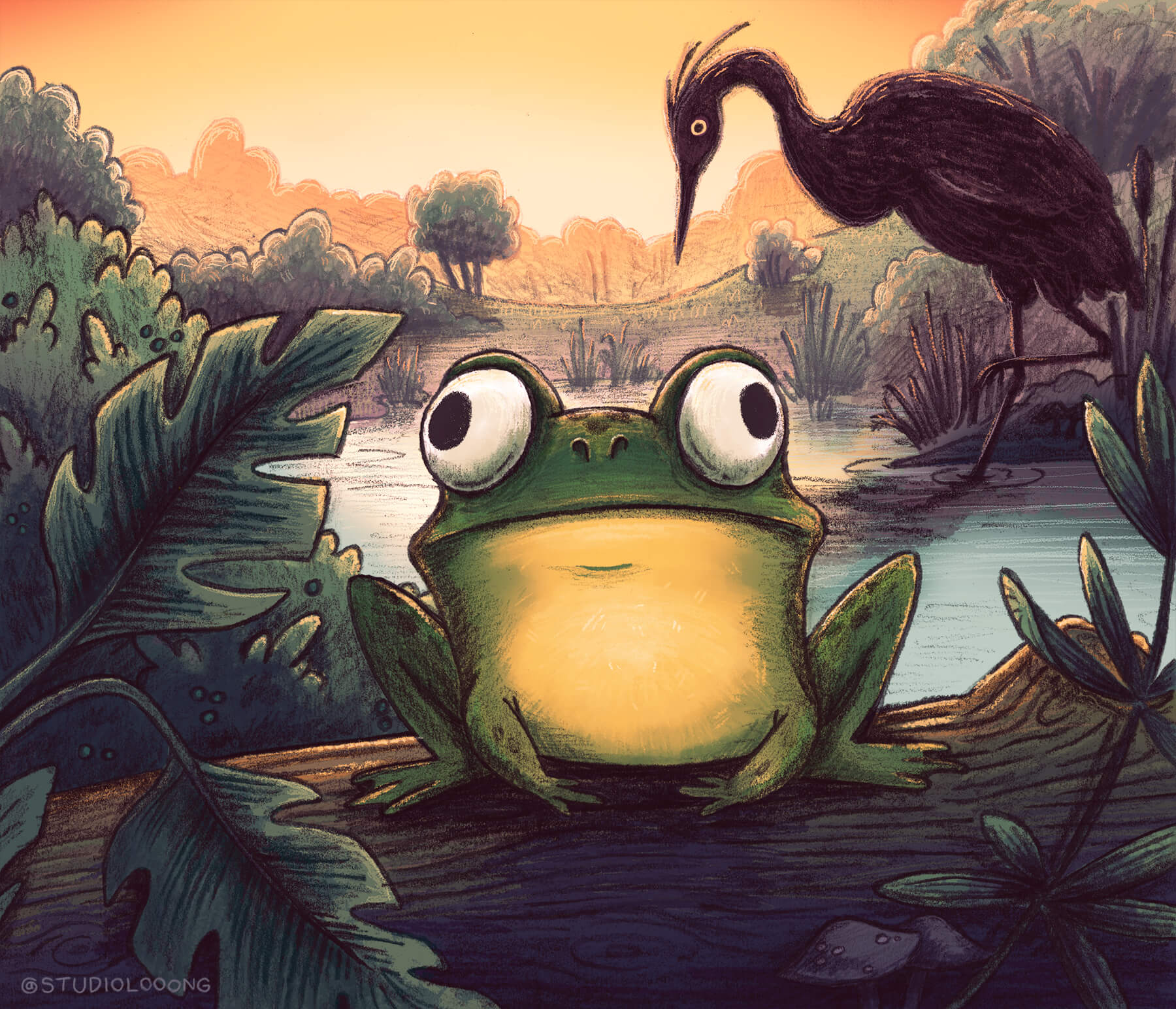 frog nature pond children's book illustration champaign Illinois midwest