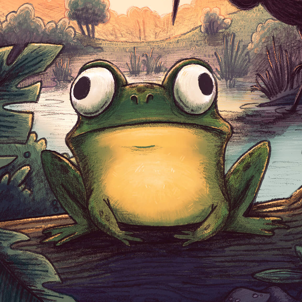 frog nature children's book illustration champaign Illinois midwest