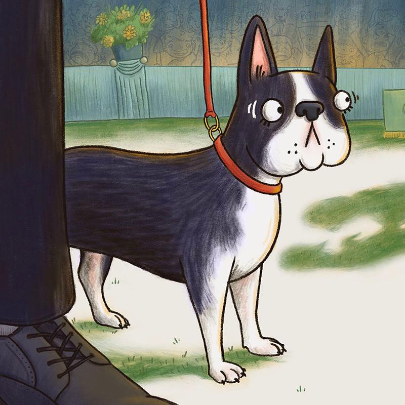dog pet nervous children's book illustration champaign Illinois midwest