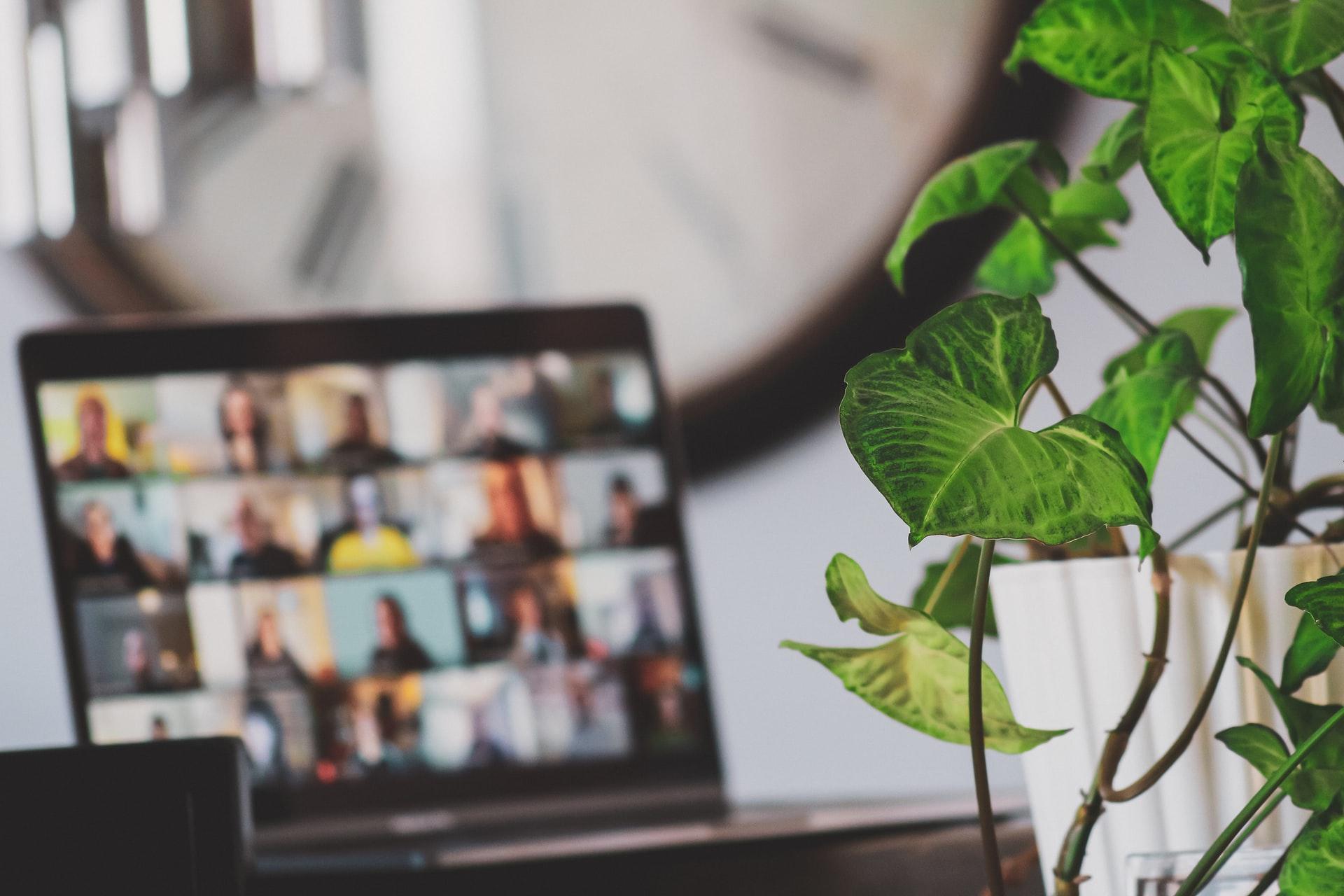 Launching Produk: Webinar Jadi Salah Satu Strategi Untuk Menarik Minat Konsumen