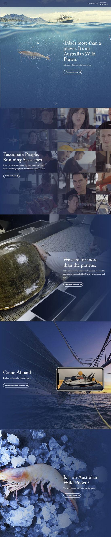 Australian Wild Prawns Website