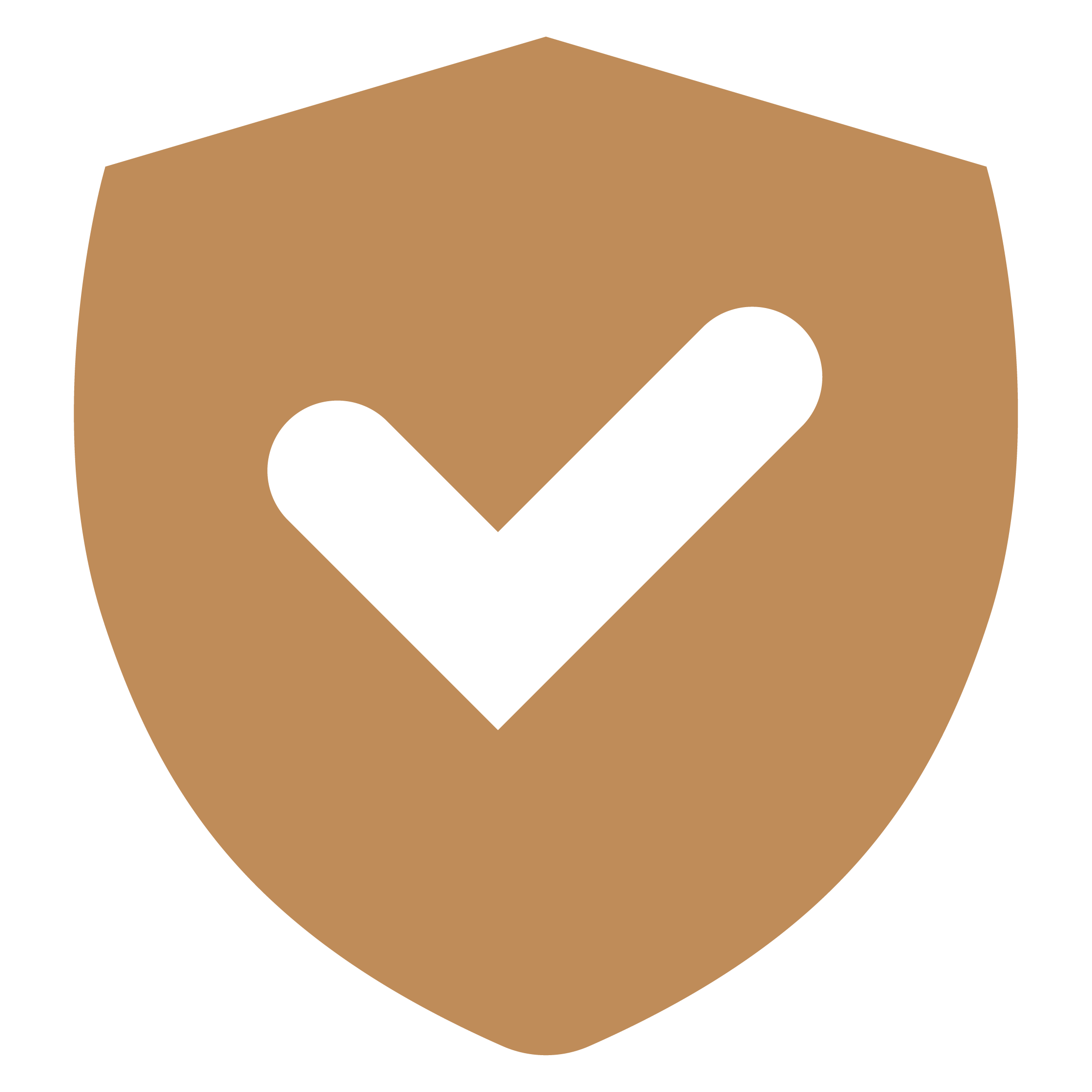 Fast secure easy to use website icon
