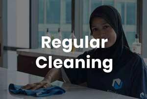 Nimbus Regular Cleaning
