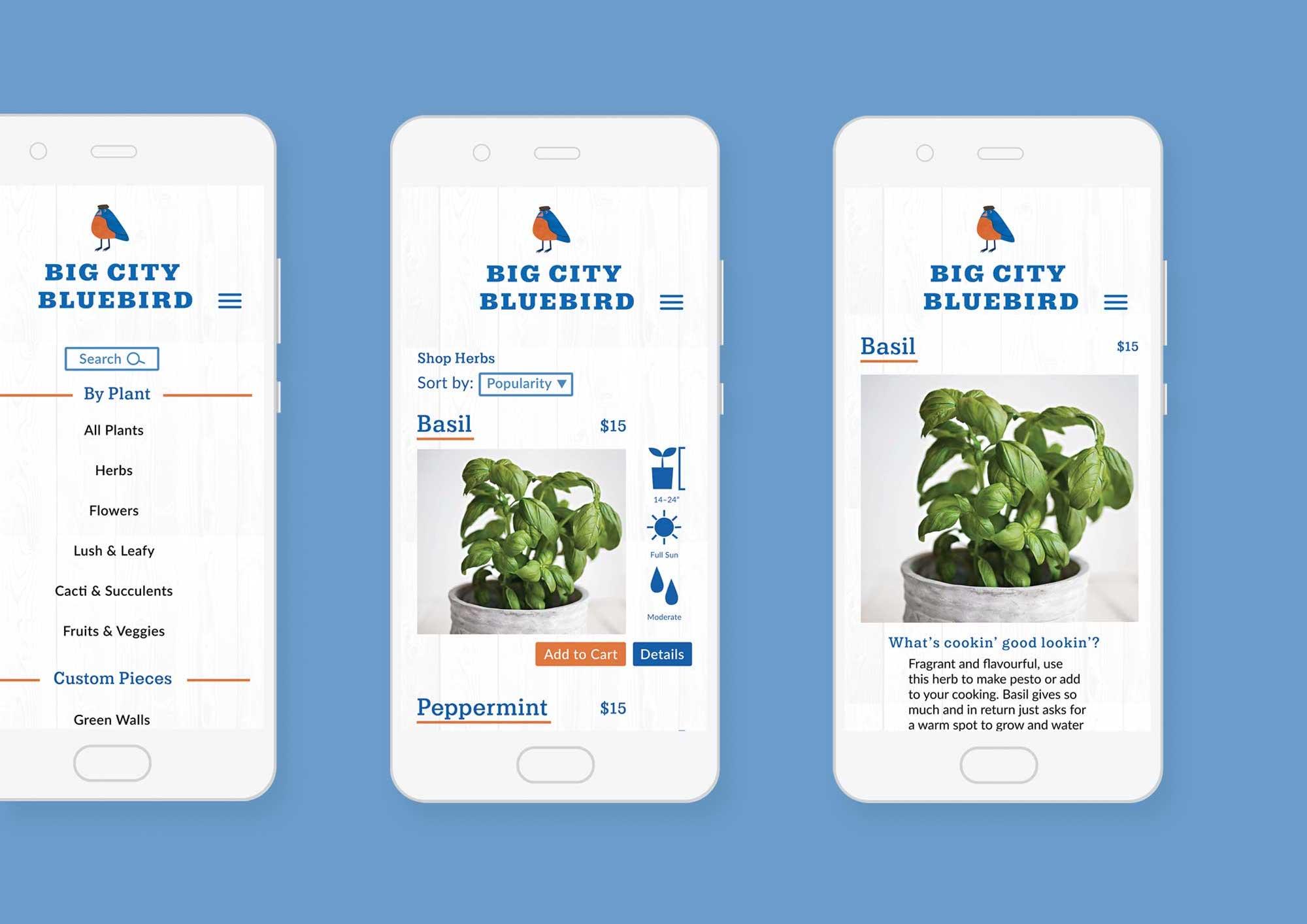 Big City Bluebird shop for plants