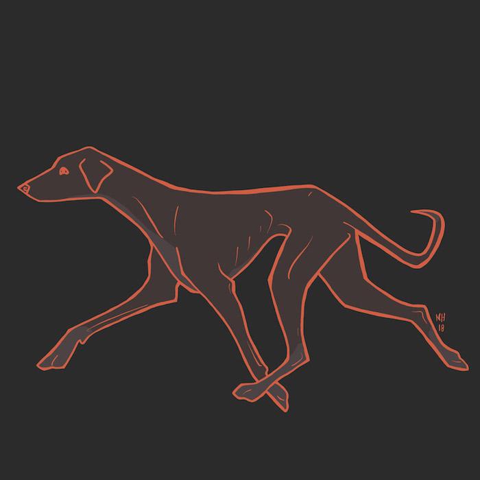 Digital drawing of an Azwakh dog.