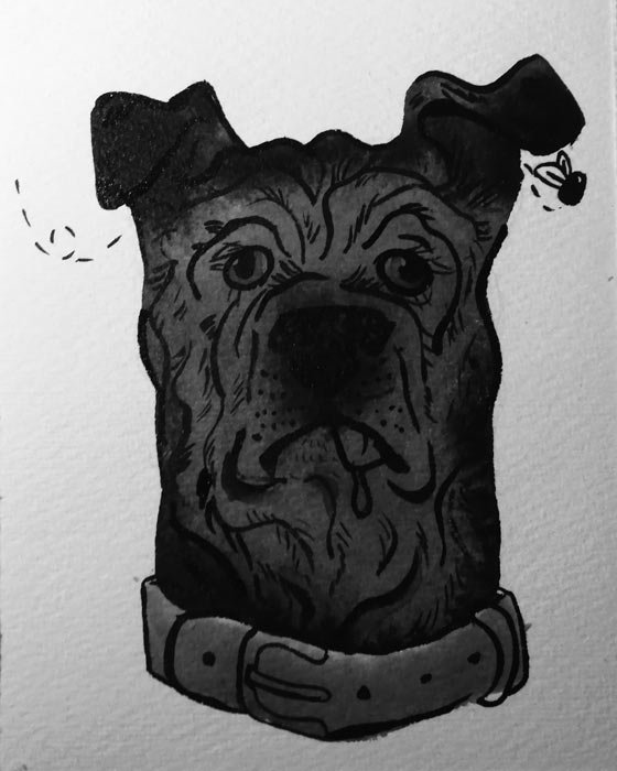 Ink drawing of a dog's face with lots of wrinkles and eyes pointing in different directions.
