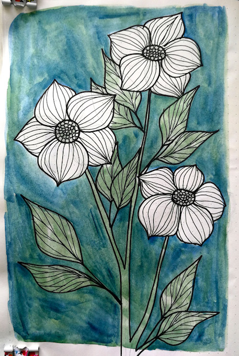 Watercolour and ink drawing of Dogwood flowers.