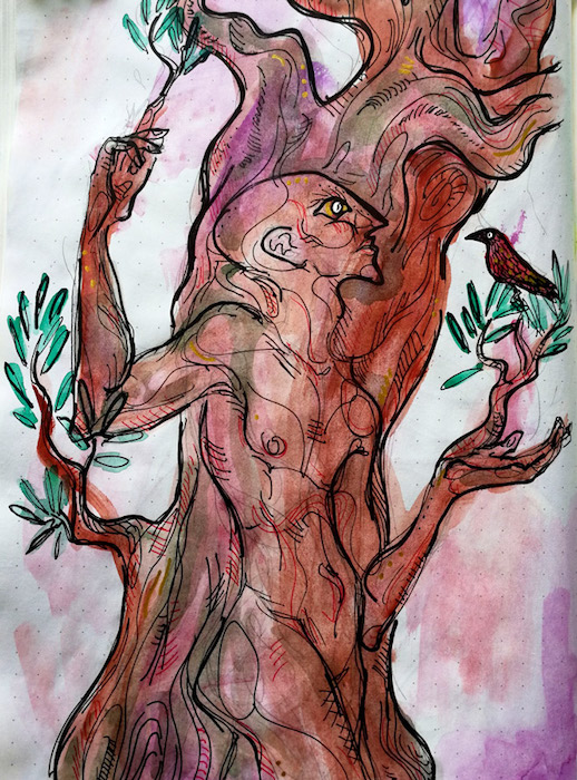 Illustration of a being that looks like it is part tree, part human.