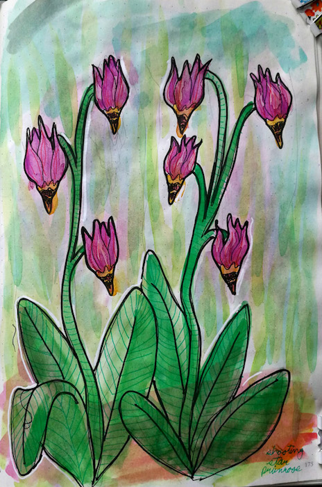 Watercolour and ink illustration of flowers.