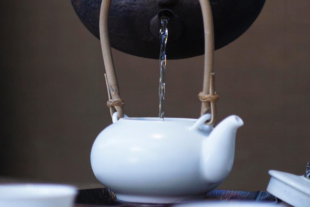 Las  3 claves para preparar té blanco