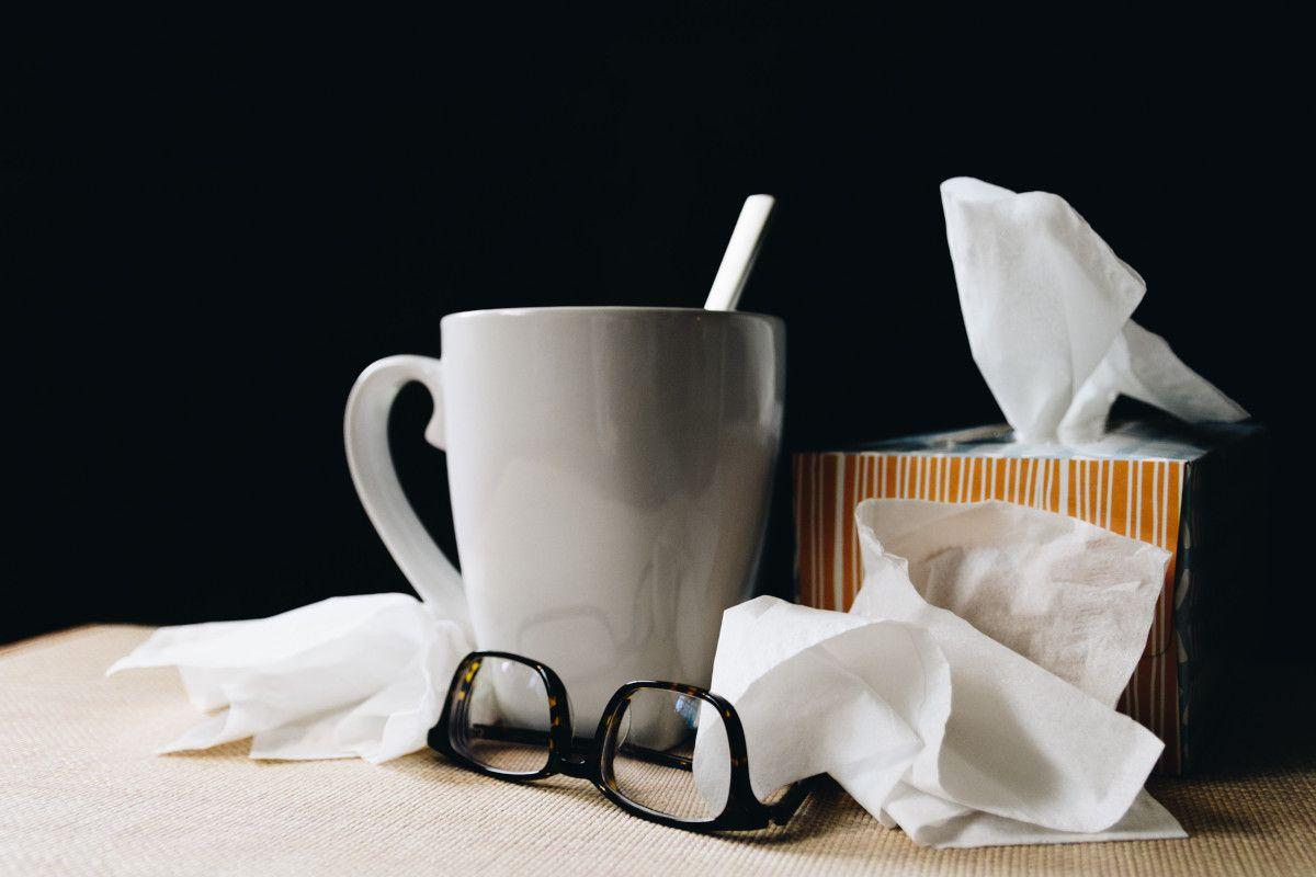 Las mejores infusiones para combatir el resfriado