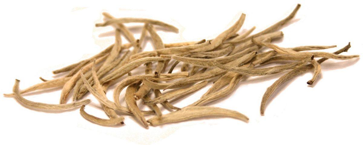 brotes de té blanco