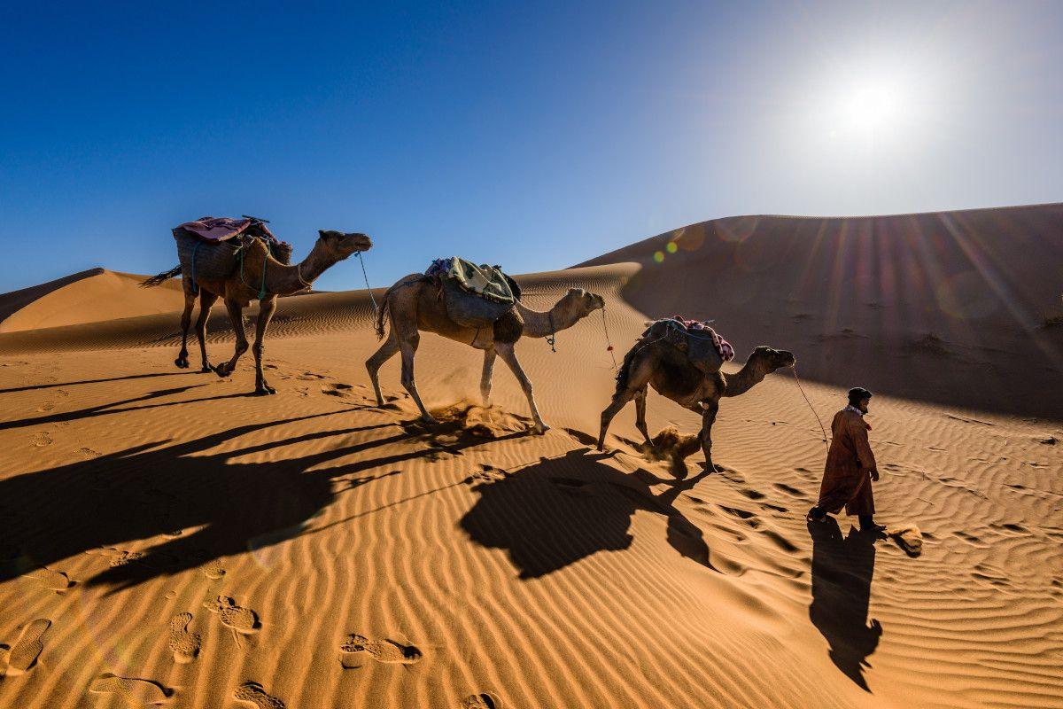 la ruta de la seda, el origen del té en el medio oriente