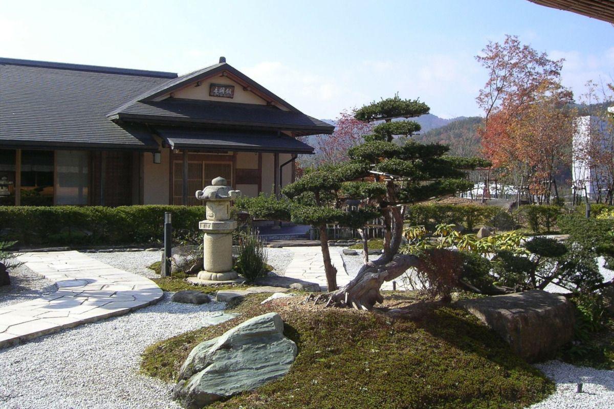 Kukicha, el té verde japonés bajo en teína