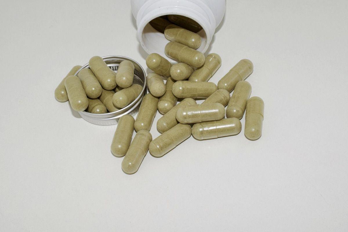extracto de te verde en pastillas