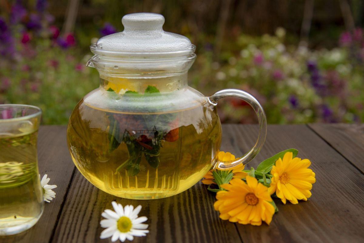 Flores de té, un espectáculo en tu taza