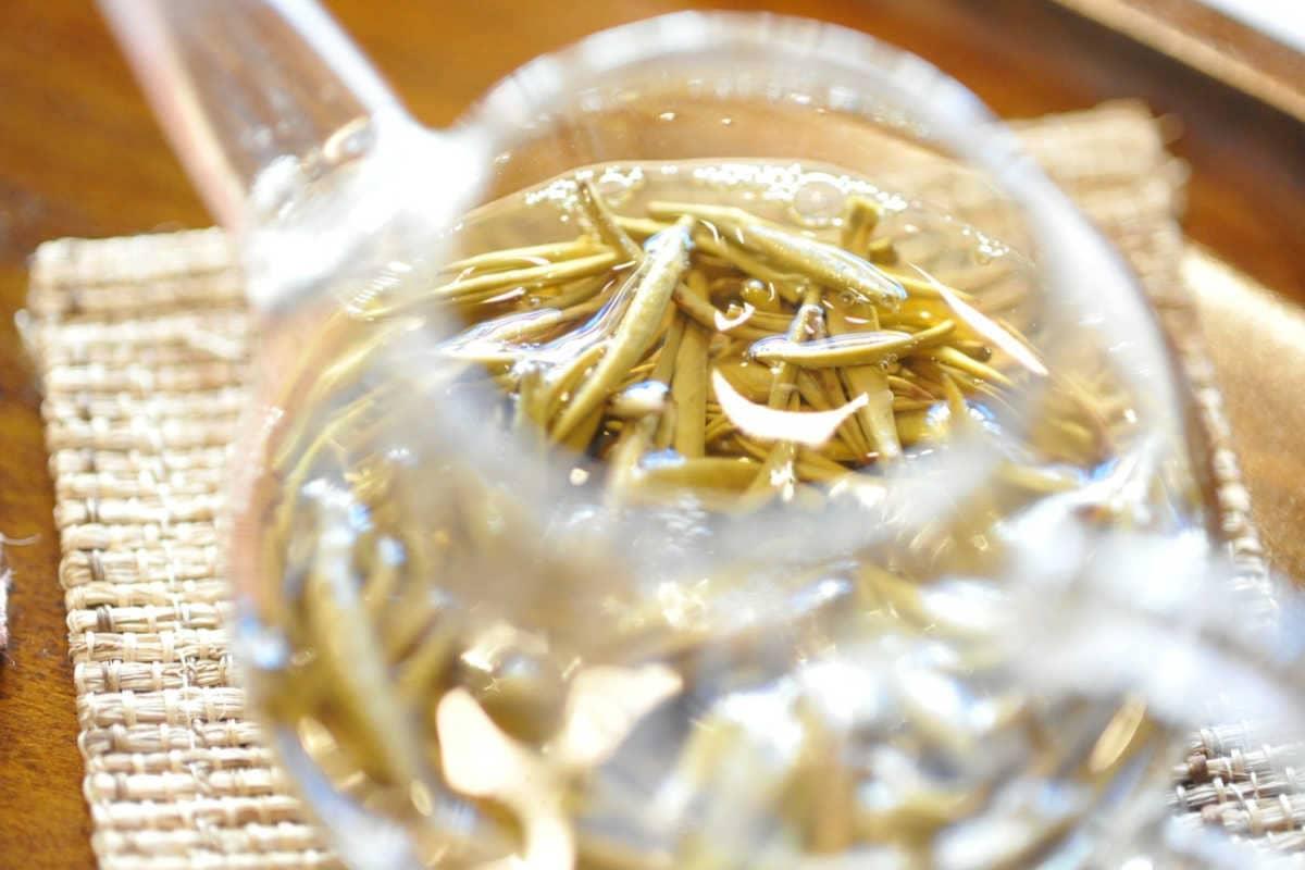 Los mejores tés verdes con jazmín