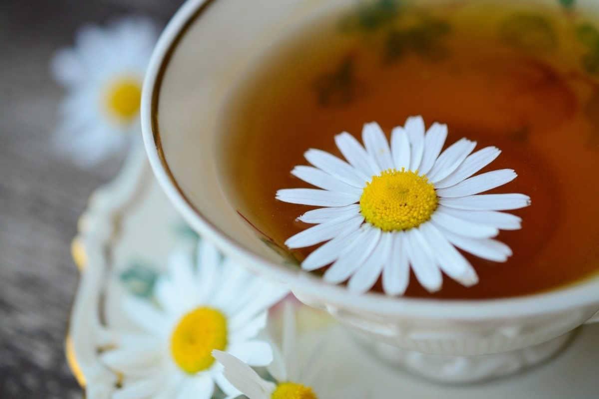 taza inglesa con infusión de manzanilla