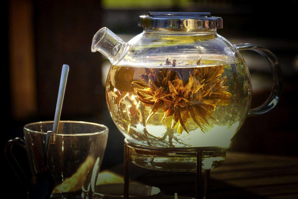 La temperatura ideal para preparar cada té