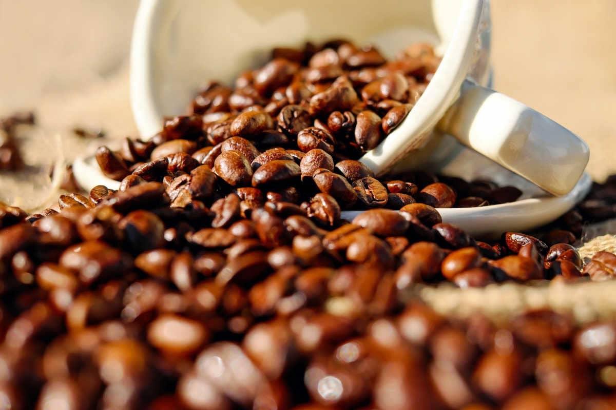 Todas las propiedades del café para tu salud