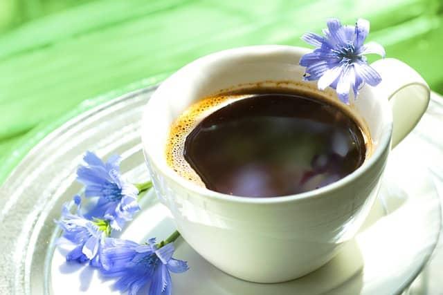 taza de café de achicoria