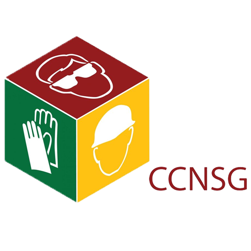 CCNSG Logo in Various Colours