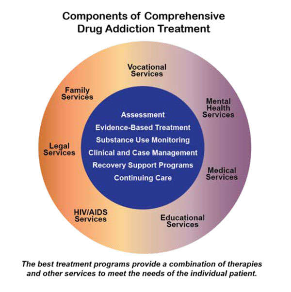 Infographic depicting the components of treating drug addiction